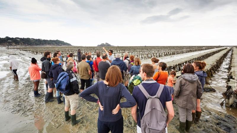 La découverte des parcs à huîtres à Cancale