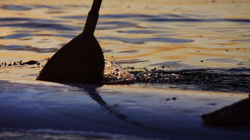Paddle dans le Golfe du Morbihan