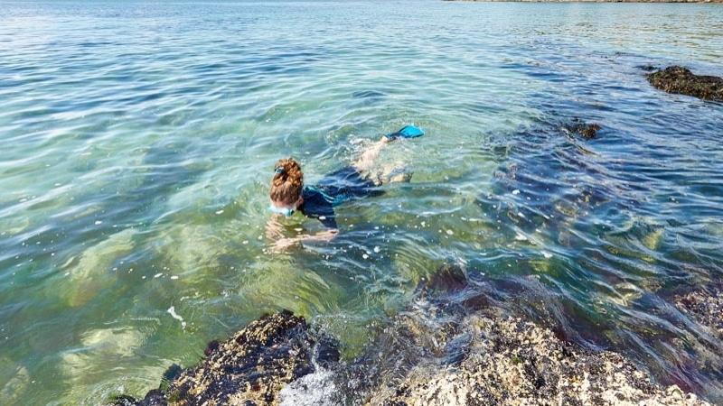 Snorkeling -  Anse de Rospico - Névez Port Manec'h