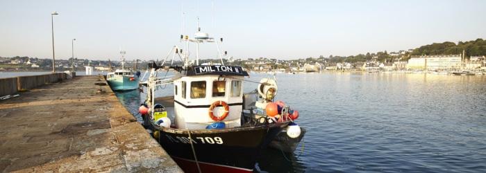 Déguster un bon plateau de fruits de mer dans un resto au port de plaisance