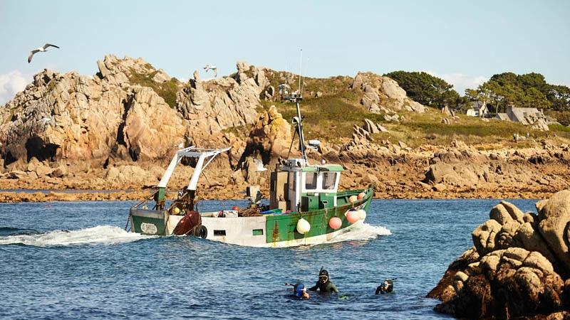 Retour de pêche au port du Diben Plougasnou