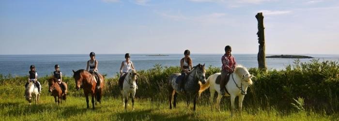 Balade à cheval - Le ranch de Rospico