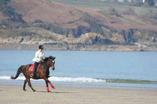 Balade à cheval en bord de mer