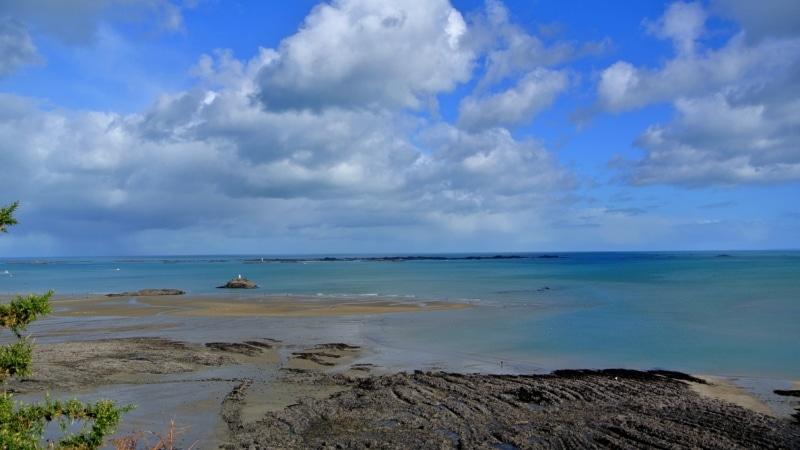 Be curious : Découverte du safari marin à Binic Etables sur Mer