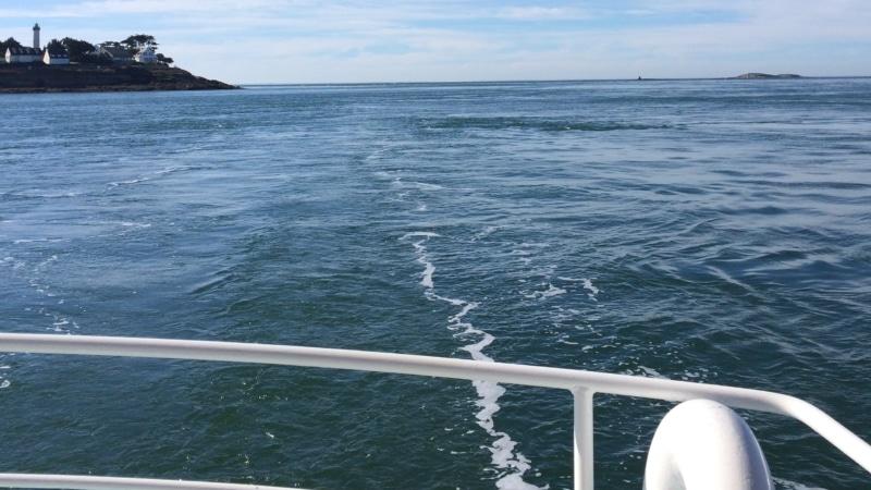 Le Golfe du Morbihan depuis Arzon