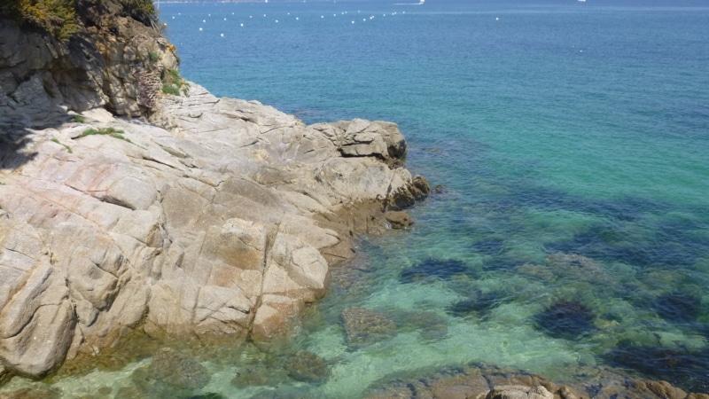 Crique et eau turquoise à Fouesnant
