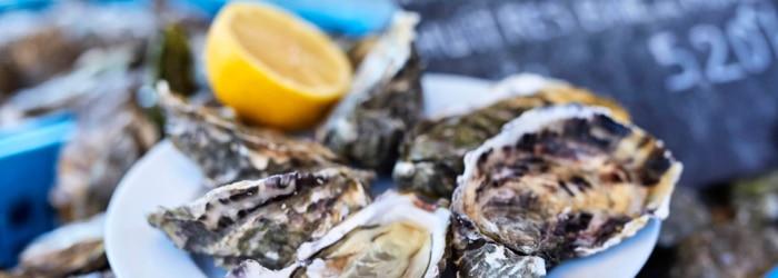 Déguster les huîtres de la baie de Morlaix