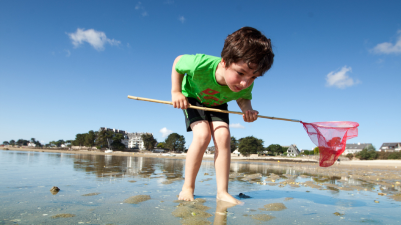 S'initier à la pêche à pied en famille à Carnac