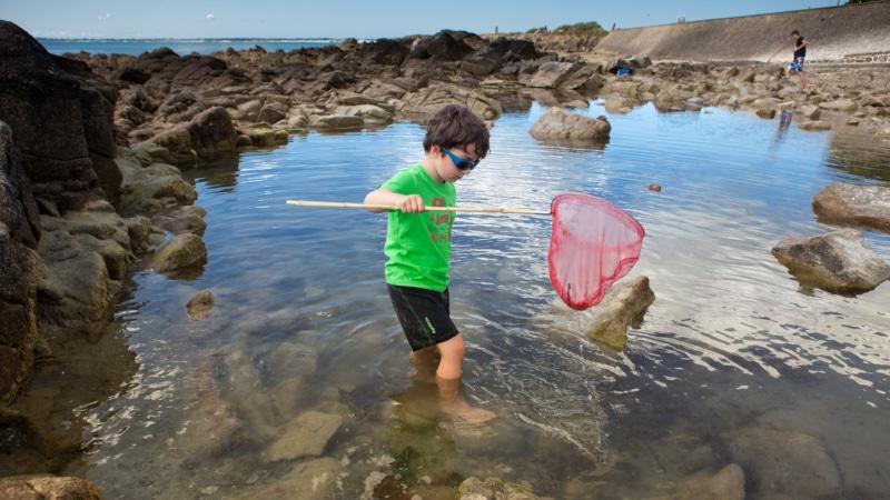Pêche à pied à Carnac