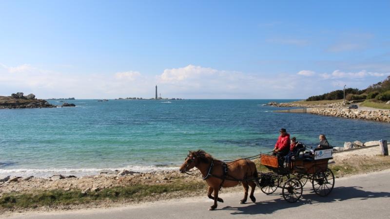Balade en calèche à Plouguerneau avec le phare de l'Île Vierge en toile de fond