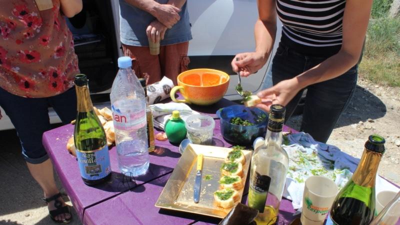 Découverte des algues avec Mélanie Chouan