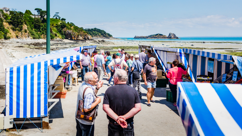La marché aux huîtres de Cancale