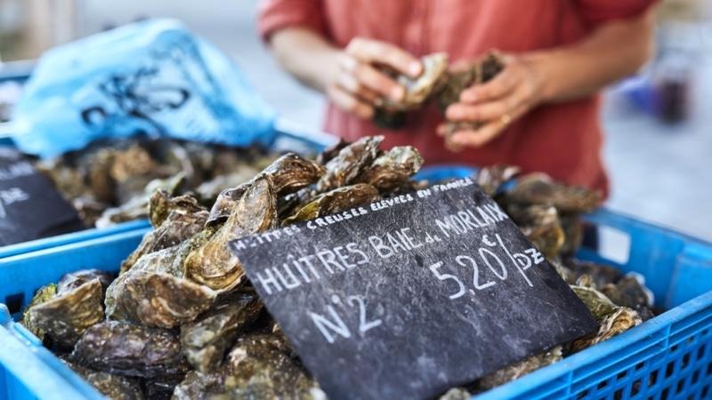 Vente d'huîtres en direct du producteur