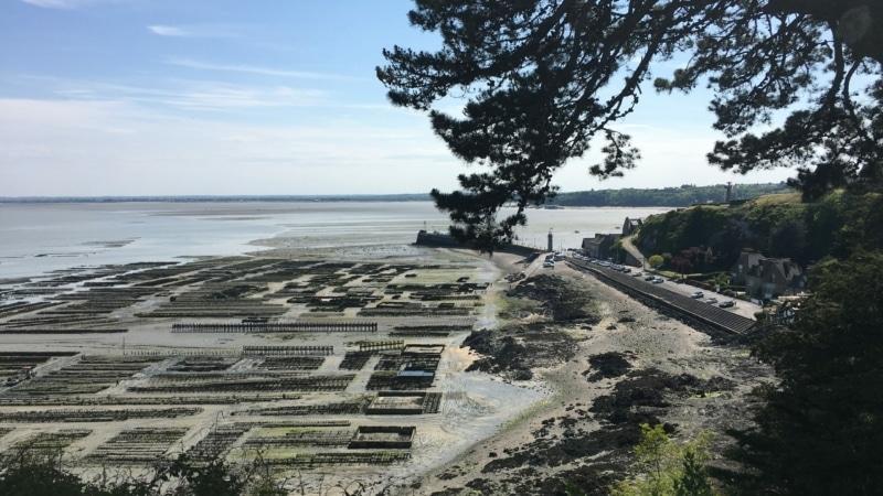 Parcs ostréicoles dans la baie du Mont-Saint-Michel