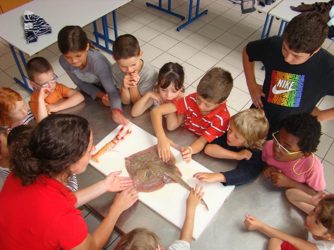 Atelier de cuisine petits chefs 6/12 ans