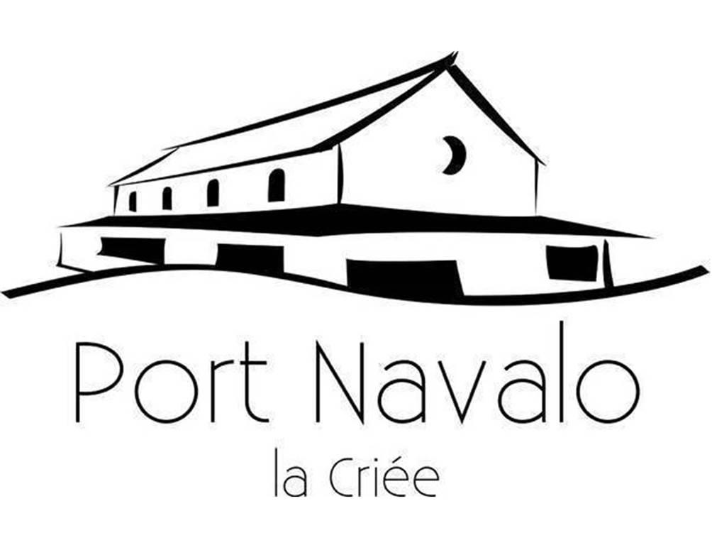 Exposition «La bataille des vénètes» à la Criée de Port Navalo